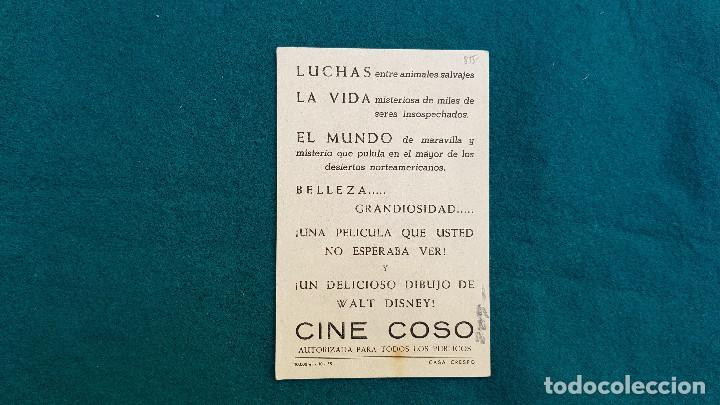 Cine: PROGRAMA DE MANO CINE EL DESIERTO VIVIENTE (S/F) CON CINE AL DORSO - Foto 2 - 222608115