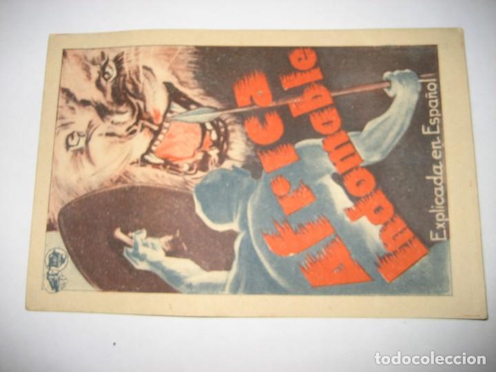 Cine: antiguo programa de mano africa indomable tarjeta . documental warner bros . savoy - Foto 4 - 264784679