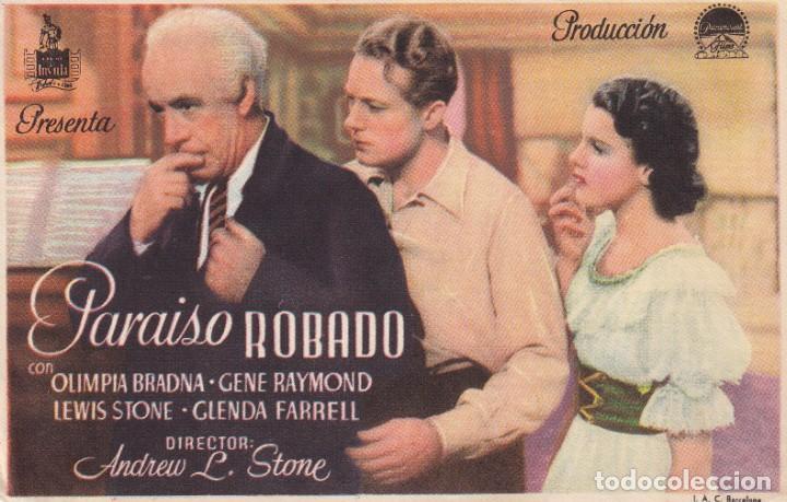 PARAISO ROBADO .- OLIMPIA BRADNA (Cine - Folletos de Mano - Clásico Español)