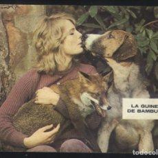 Cine: P-9636- LA GUINEU DE BAMBURY (THE BELSTOSE FOX) (CON PUBLICIDAD) ERIC PORTER - JEREMY KEMP. Lote 288208843