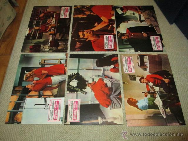 Cine: Hasta que el divorcio nos separe, Marcello Fondato, Senta Berger, 12 fotocromos, lobby cards - Foto 3 - 40450313