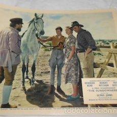 Cine: FOTOGRAMA DE THE SUNDOWNERS, CON ROBERT MITCHUM, DEBORAH KERR Y PETER USTINOV. Lote 55351158