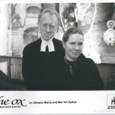 Cinema: FOTOGRAMA DE LA PELICULA - OX ( OXEN - CON LIV ULLMANN Y MAX VON SYDOW DE 1991. Lote 65438426
