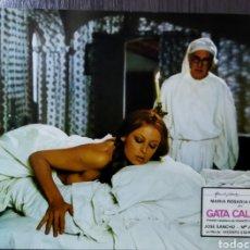 Cine: FOTO FILM PROMOCIONAL PELÍCULA GATA CALIENTE 1979. Lote 295890113