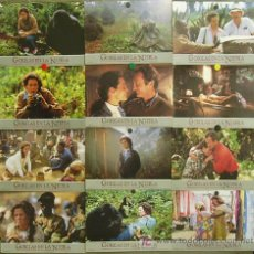 Cine: FR67 GORILAS EN LA NIEBLA SIGOURNEY WEAVER SET COMPLETO 12 FOTOCROMOS ORIGINAL ESTRENO. Lote 10321728