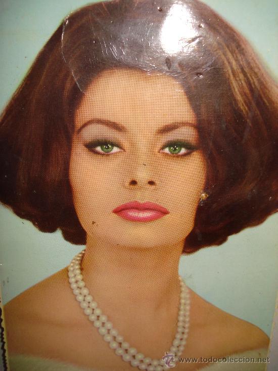 SOFIA LOREN ( 1964) (Cine - Fotos y Postales de Actores y Actrices)