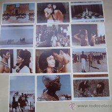 Cine: FARAON PHARAOH - 12 FOTOS COR ORIGINALES ESPAÑOLAS DE LA REPOSICION JERZY KAWALEROWICZ. Lote 29150307