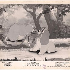Cinema: F8386 LA DAMA Y EL VAGABUNDO WALT DISNEY FOTO B/N ORIGINAL AMERICANA . Lote 30647041