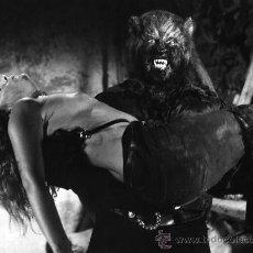 Cine: PAUL NASCHY (COLECCION DE 12 FOTOS ORIGINALES 20X30 EL RETORNO DEL HOMBRE LOBO 1980) FANTATERROR. Lote 175209429