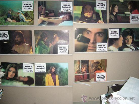 HIERBA SALVAJE SONIA PETROVA MIGUEL AYONES JUEGO COMPLETO B (Cine - Fotos, Fotocromos y Postales de Películas)