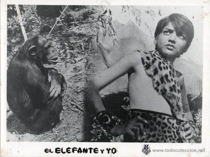 FOTOGRAFÍA ORIGINAL MY FRIEND MONKEY BANDAR MERA SATHI MI AMIGO ELEFANTE Y YO MASTER SANJEEV 1966 (Cine - Fotos y Postales de Actores y Actrices)