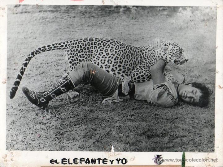 FOTO ORIGINAL MY FRIEND MONKEY BANDAR MERA SATHI MI AMIGO ELEFANTE Y YO JAGDISH KANWAL MANJU 1966 (Cine - Fotos y Postales de Actores y Actrices)