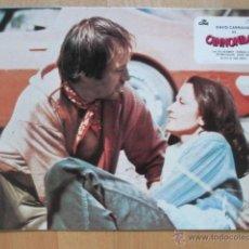 Cine - CANNONBALL, CANNON BALL, BILL MCKINNEY, VERONICA HAMEL, 1979, 8 FOTOCROMOS, F134 - 44177928