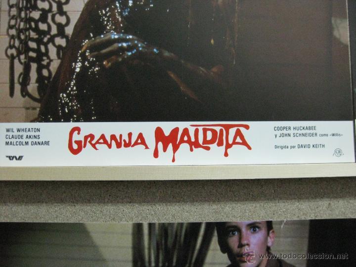 Cine: GRANJA MALDITA, H.P. LOVECRAFT, WIL WHEATON - SET COMPLETO 12 FOTOCROMOS - Foto 2 - 120395692
