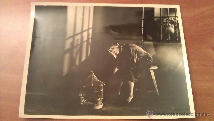 FOTOGRAFÍAS PELICULA ANASTASIA : LLILY PALMER (Cine - Fotos y Postales de Actores y Actrices)