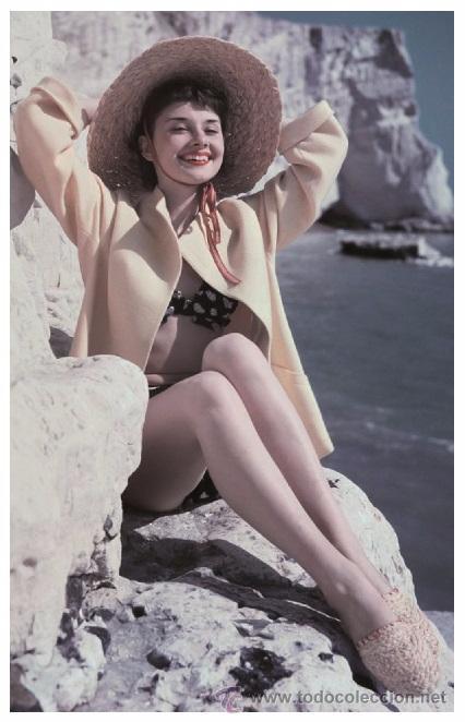 Sexy Audrey Hepburn Actress Pin Up Postcard P Buy Photos And