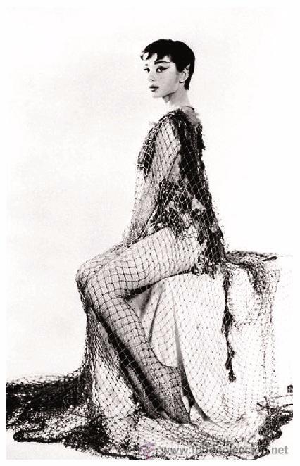 Sexy Audrey Hepburn Actress Pin Up Postcard P Sold Through