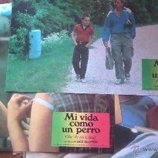 Cine: MI VIDA COMO UN PERRO. 10 FOTOCROMOS O FOTOGRAMAS. ORIGINALES. MOVIE. Lote 52474754