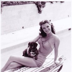 Cine: JULIE LONDON - FILM STAR PIN UP - PUBLISHER SWIFTSURE POSTCARDS 2000. Lote 55339935