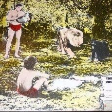Cine: FOTOCROMO TARZAN EN EL VALLE DE ORO . ( TARZAN 66 ) MIKE HENRY PANAVISION . CARTON DURO AÑO 1966. Lote 56367731