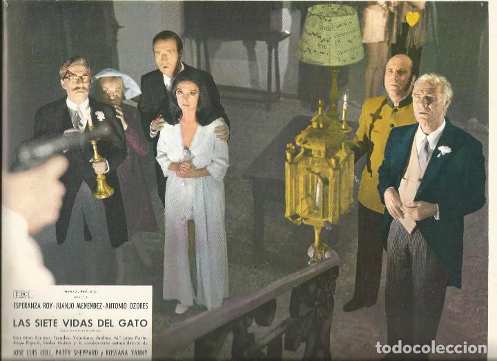 LAS SIETE VIDAS DEL GATO JUANJO MENENDEZ PATTY SHEPPARD OZORES FOTOCROMO ORIGINAL Q (Cine - Fotos, Fotocromos y Postales de Películas)