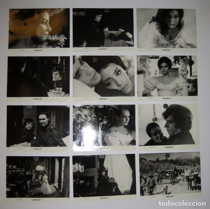 CECILIA (CUBA, 1982)LOTE DE 12 FOTOS B/N 24X18 DAISY GRANADOS, IMANOL ARIAS, RAQUEL REVUELTA WARNER (Cine - Fotos, Fotocromos y Postales de Películas)