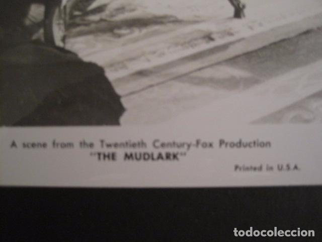 Cine: THE MUDLARK - FOTOGRAFIA ESCENA PELICULA-20 TH. FOX -IRENE DUNN -MIDE 20X25 CM-(V-7750-ESCOJER FOTO) - Foto 2 - 68680385