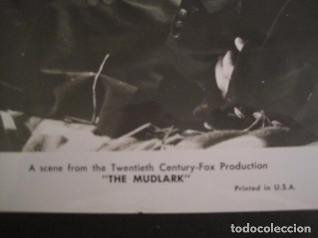 Cine: THE MUDLARK - FOTOGRAFIA ESCENA PELICULA-20 TH. FOX -IRENE DUNN -MIDE 20X25 CM-(V-7750-ESCOJER FOTO) - Foto 2 - 68680821