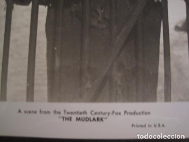Cine: THE MUDLARK - FOTOGRAFIA ESCENA PELICULA-20 TH. FOX -IRENE DUNN -MIDE 20X25 CM-(V-7750-ESCOJER FOTO) - Foto 2 - 68681261