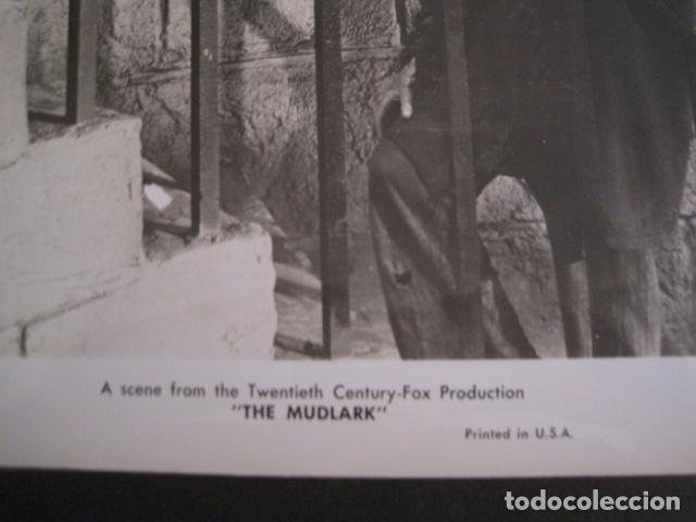 Cine: THE MUDLARK - FOTOGRAFIA ESCENA PELICULA-20 TH. FOX -IRENE DUNN -MIDE 20X25 CM-(V-7750-ESCOJER FOTO) - Foto 2 - 68681301