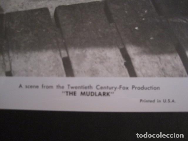Cine: THE MUDLARK - FOTOGRAFIA ESCENA PELICULA-20 TH. FOX -IRENE DUNN -MIDE 20X25 CM-(V-7750-ESCOJER FOTO) - Foto 2 - 68681349