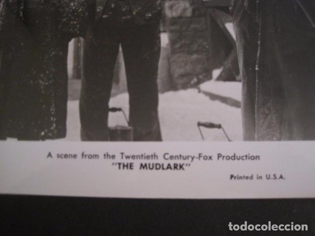Cine: THE MUDLARK - FOTOGRAFIA ESCENA PELICULA-20 TH. FOX -IRENE DUNN -MIDE 20X25 CM-(V-7750-ESCOJER FOTO) - Foto 2 - 68681817