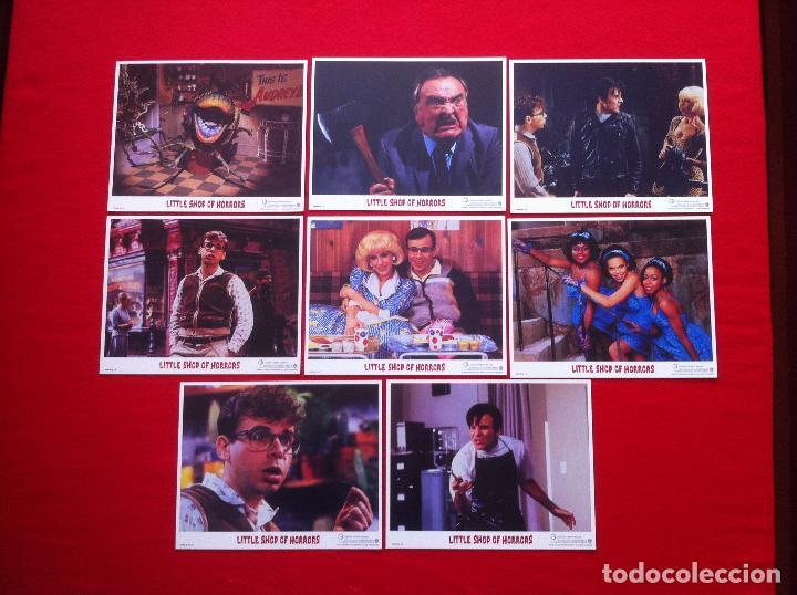LOTE 8 FOTOCROMOS LA PEQUEÑA TIENDA DE LOS HORRORES LOBBY CARD CARTON-CARTULINA EDICION USA (Cine - Fotos, Fotocromos y Postales de Películas)