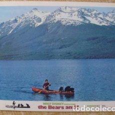Cine: THE BEARS AND I LOBBY CARD, TECHNICOLOR, YEAR 1974, WALT DISNEY PRODUCITIONS. Lote 80788722