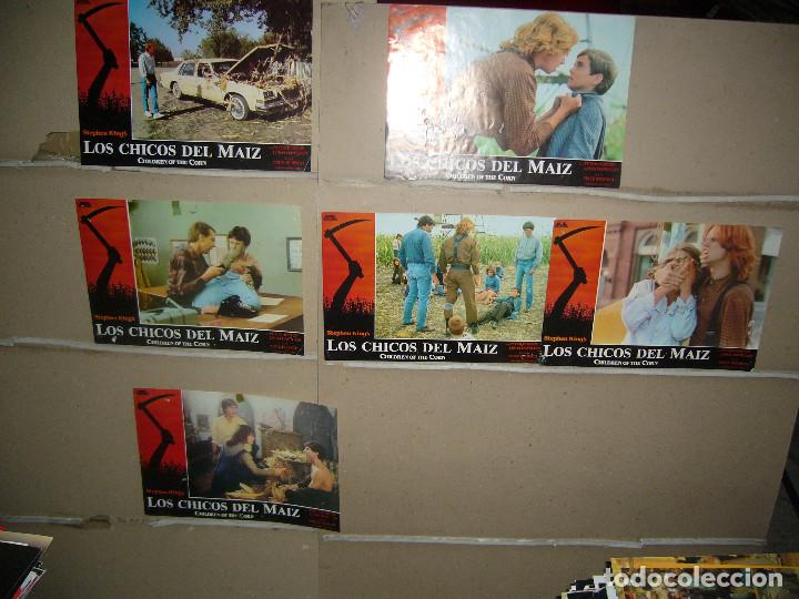 LOS CHICOS DEL MAIZ STEPHEN KING 6 FOTOCROMOS ORIGINALES Q (Cine - Fotos, Fotocromos y Postales de Películas)