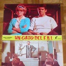 Cine: LOTE 2 FOTOCROMOS UN GATO DEL F.B.I. THAT DARN CAT! WALT DISNEY HAYLEY MILLS SPAIN LOBBY CARDS SET. Lote 95065459