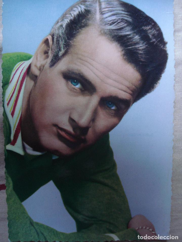 POSTAL DE PAUL NEWMAN (Cine - Fotos y Postales de Actores y Actrices)