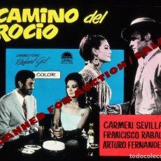 Cine: CARMEN SEVILLA. TRANSPARENCIA PROFESIONAL 'CAMINO DEL ROCÍO', 7,5 X 6 CMS.. Lote 98312119