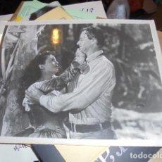 Cine: FOTO EL ANGEL Y EL PISTOLERO JOHN WAYNE GAIL RUSSELL - 23 X 18 CMS - ANGEL & THE BADMAN. Lote 105559223