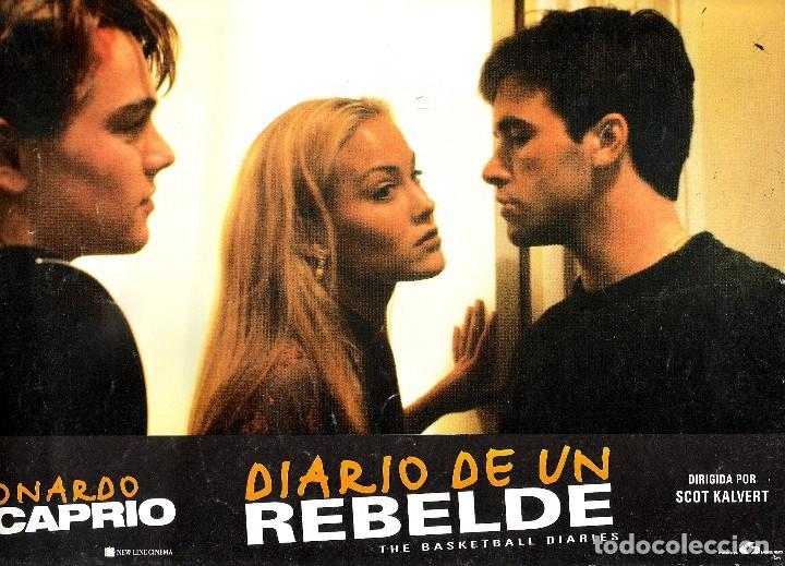 FOTO CROMO ORIGINAL (DIARIO DE UN REBELDER) LEONARDO DI CAPRIO (Cine - Fotos, Fotocromos y Postales de Películas)
