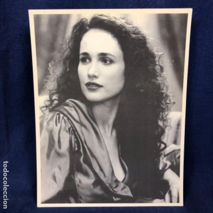 FOTOGRAFÍA ACTRIZ ANDIE MAC DOWELL HOLLYWOOD ESTADOS UNIDOS LA BELLEZA SUREÑA DE LOS 90 (Cine - Fotos y Postales de Actores y Actrices)