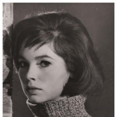 Cine: SEXY JANET MUNRO ACTRESS PIN UP PHOTO POSTCARD - PUBLISHER RWP 2003 (05). Lote 125514363