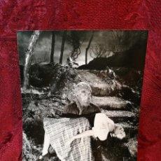 Cinema: FOTO-PROMO.PROMOCIONAL B/N---.24 X 18-LA ZÍNGARA Y LOS MONSTRUOS (1944) -TERROR--HOMBRE LOBO. Lote 126395859