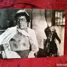 Cine: FOTO-PROMO.PROMOCIONAL B/N---.24 X 18--THE CURSE OF THE WEREWOLF AÑO 1961-TERROR- . Lote 126398759