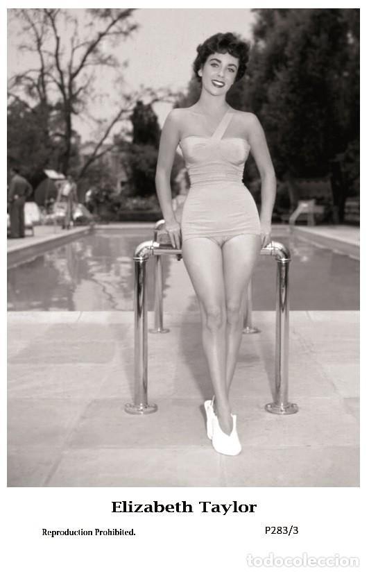 ELIZABETH TAYLOR - FILM STAR PIN UP PHOTO POSTCARD - P283-3 SWIFTSURE POSTCARD (Cine - Fotos y Postales de Actores y Actrices)