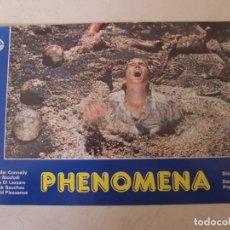 Cine: PHENOMENA / DARIO ARGENTO / JENNIFER CONNELLY / JUEGO COMPLETO ORIGINAL 12 FOTOCROMOS ESTRENO. Lote 156775522