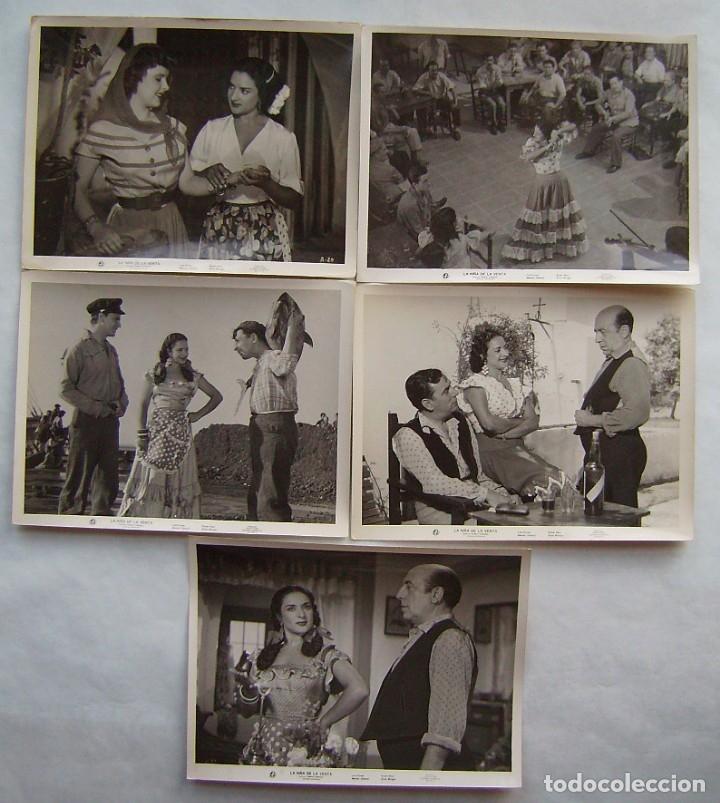 LA NIÑA DE LA VENTA, CON LOLA FLORES. 5 FOTOS FOTOCROMOS ORIGINALES, 18 X 24 CMS.. (Cine - Fotos, Fotocromos y Postales de Películas)