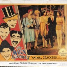 Cine: THE MARX BROTHERS GROUCHO HARPO POSTCARD ANIMAL CRACKERS A PARAMOUNT PICTURES. Lote 176033193