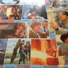 Cinema: LE LLAMAN BODHI * PATRICK SWAYZE, KEANU REVES * 12 LOBBY CARDS * 34 CM X 24 CM . Lote 178313315
