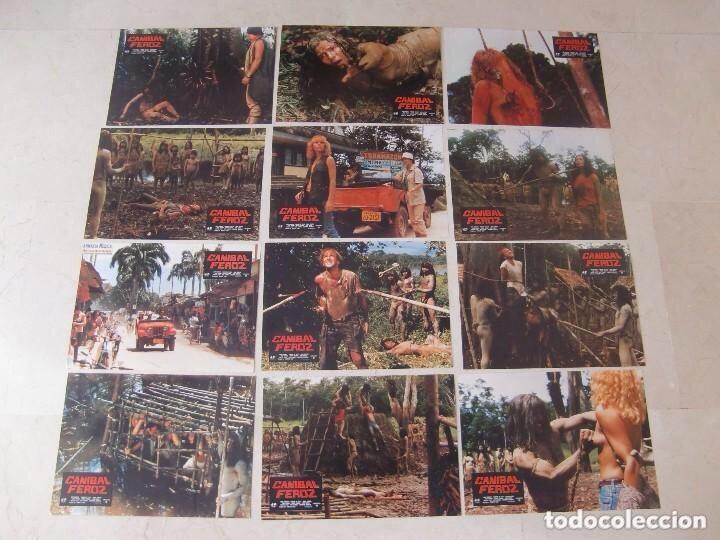 Cine: FOTOCROMOS. CANÍBAL FEROZ - Foto 13 - 182665192